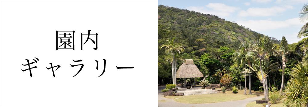 大島紬村の園内ギャラリー